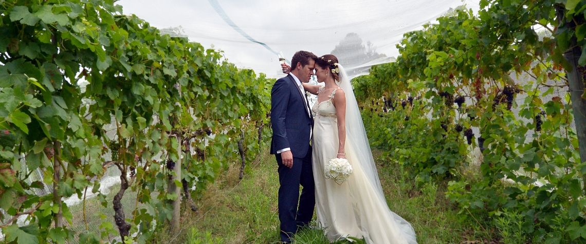 Husband and wife kiss in a vineyard on their wedding Day.