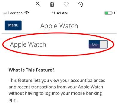 apple watch toggle