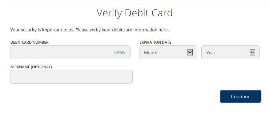 Debit Card Entry Screen